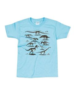 Boys Dinosaurs Galore T-Shirt