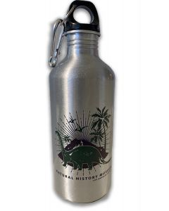 Academy Dinosaur Caribiner Top Water Bottle
